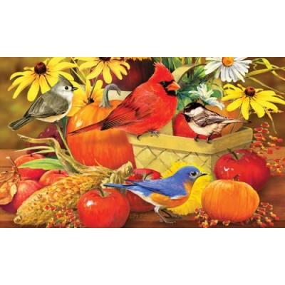 Autumn Songbirds