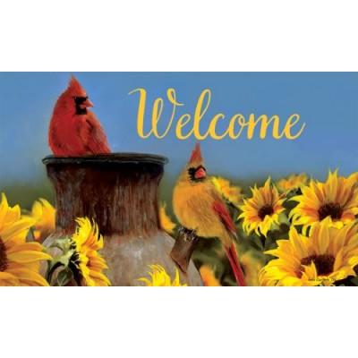 Cardinal Sunflowers