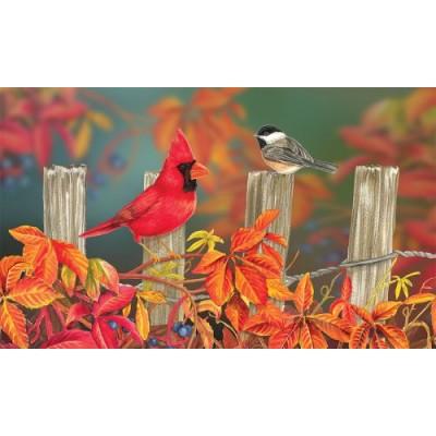 Songbird Fence