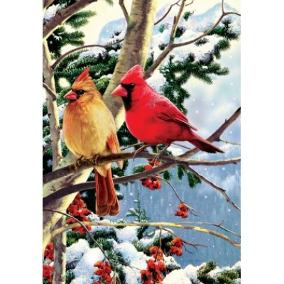 Cardinal Branch by Greg Giordano