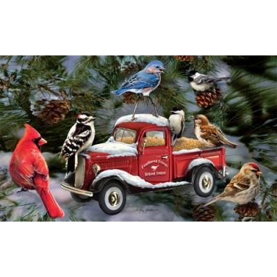 Bird Feeder Truck