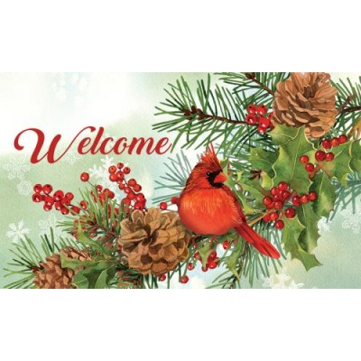 Cardinal And Pines