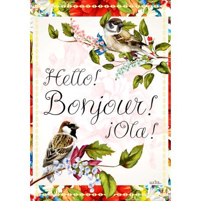 Hello, Bonjour Ola