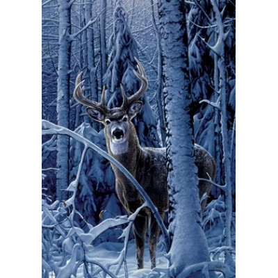Cerf d'hivers