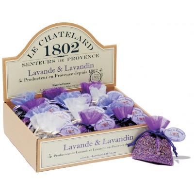 fleurs-de-lavande-etlavandin