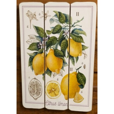 """Art mural/ Plaque de Bois Citrus Lime """"24x36X1.8 cm"""