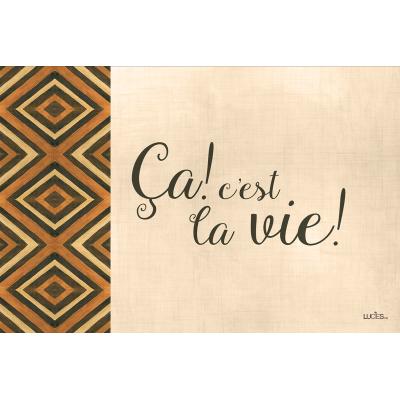 Coussin fait de   polyester pour l'intérieur ou l'extérieur / Ca c'est la vie ./Pre-booking hiver 2021-22 produits Lucies