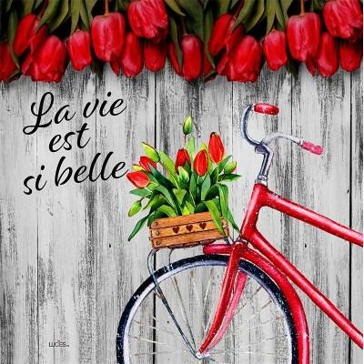 Coussin La vie est  si belle bicyclette   /Nouveauté placement / Printemps été 2022